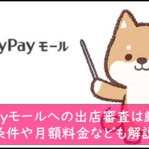 PayPayモールへの出店審査は厳しい!条件や月額料金なども解説